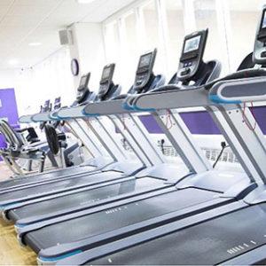 A row of treadmills indoors